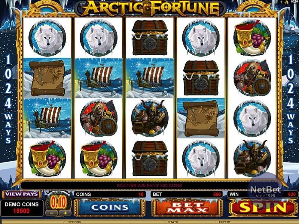 Arctic Fortune Video Slot