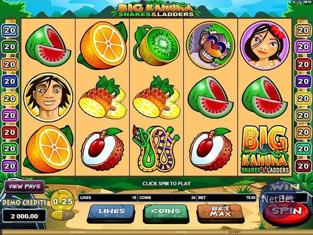 Big Kahuna Snakes and Ladders Slot